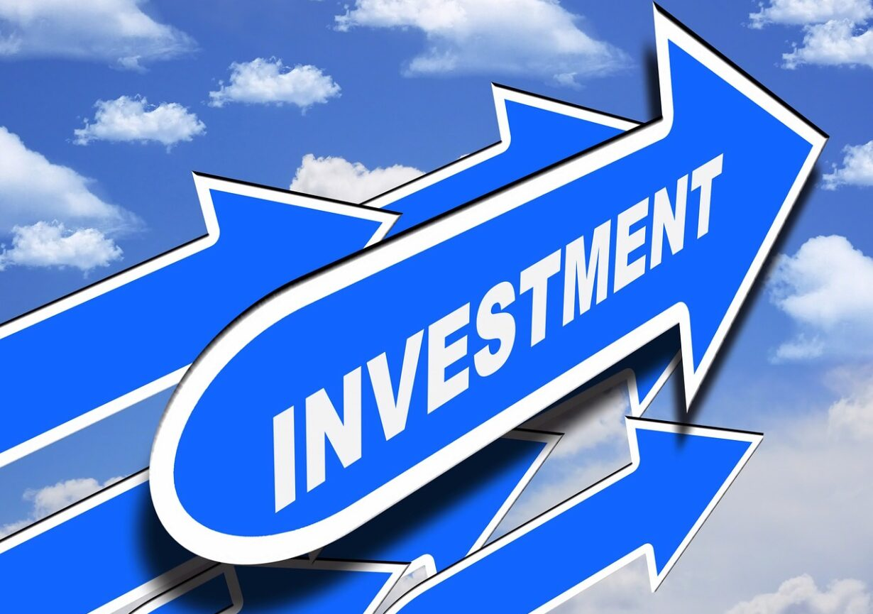 Invest Money Plant Investment Capital Investment